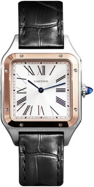 Cartier Santos-Dumont Large Silver Dial Men's Watch W2SA0011