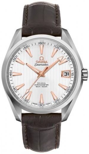 Omega Seamaster Aqua Terra 41.5mm Men's Watch 231.13.42.21.02.002